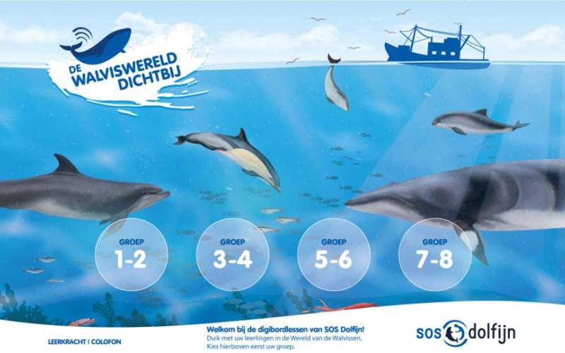 SOS Dolfijn lanceert digitaal lespakket