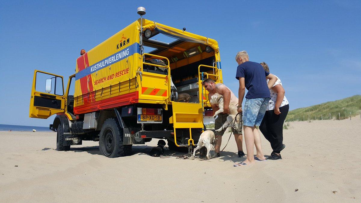 Toeristen met honden bevangen door hitte op het strand