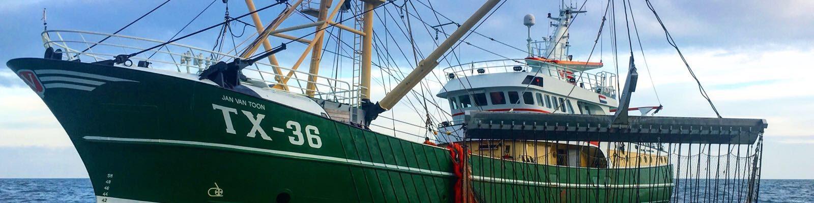 Akkoord over duurzame visserij op het IJsselmeer