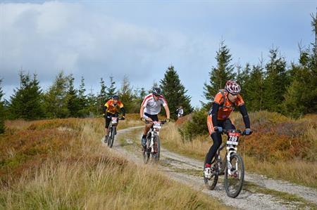 Vergunning voor mountainbikeroute Schoorlse Duinen gegrond