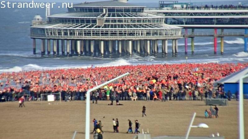 Nieuwjaarsduiken aan de Nederlandse kust live