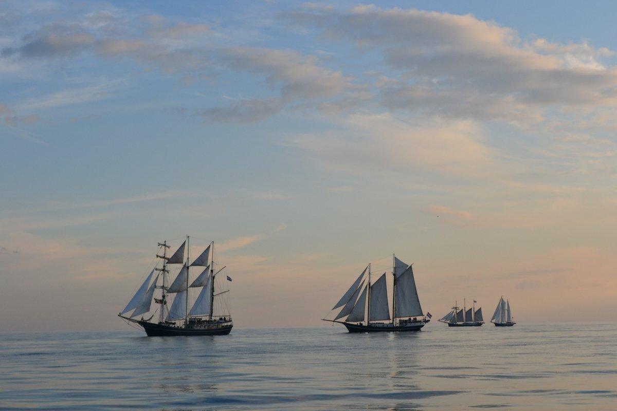 Klassieke zeilschepen vrijdag in haven Scheveningen