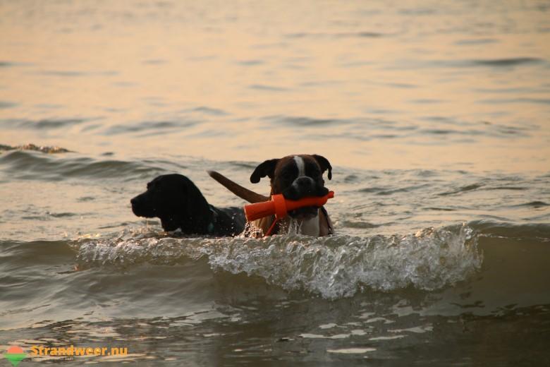 Het strandweer voor woensdag 5 september