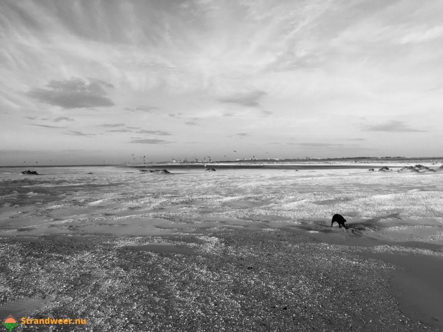 Het strandweer op Koningsdag 27 april