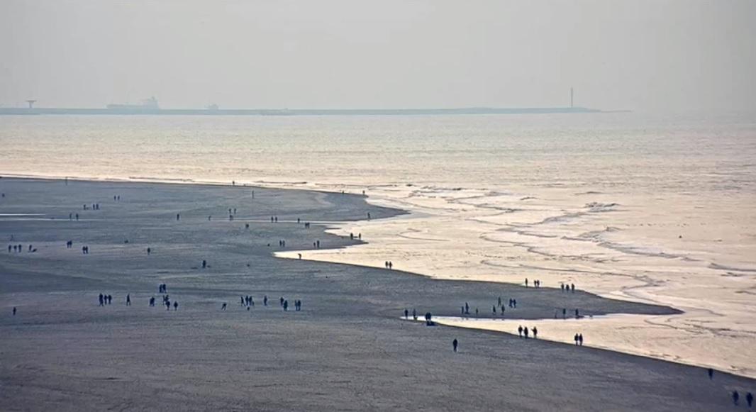 Het strandweer voor maandag 1 februari