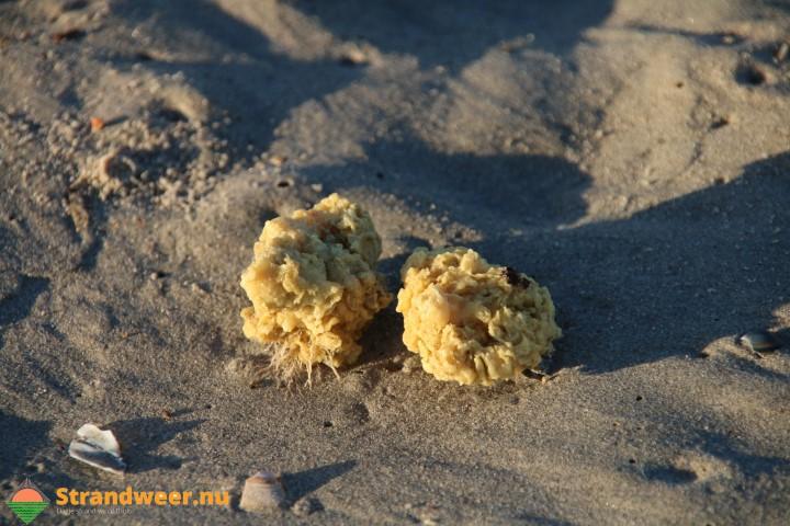 Aanpak resten paraffine op zee en strand