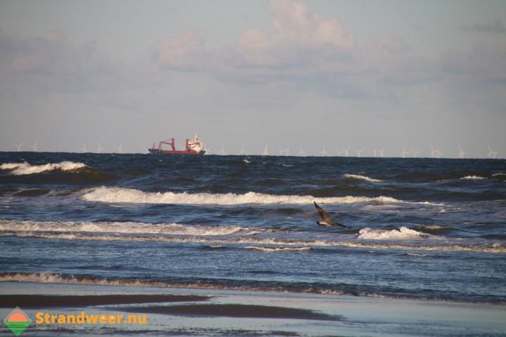 Betere arbeidsvoorwaarden en bescherming voor zeevarenden