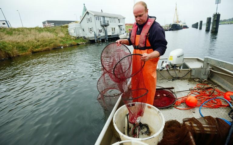 Zenderonderzoek naar schieraal Noordzeekanaal