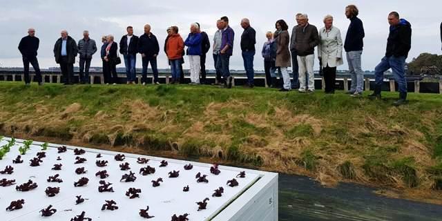 Veel interesse voor kweek van krab en sla in de Wieringermeer