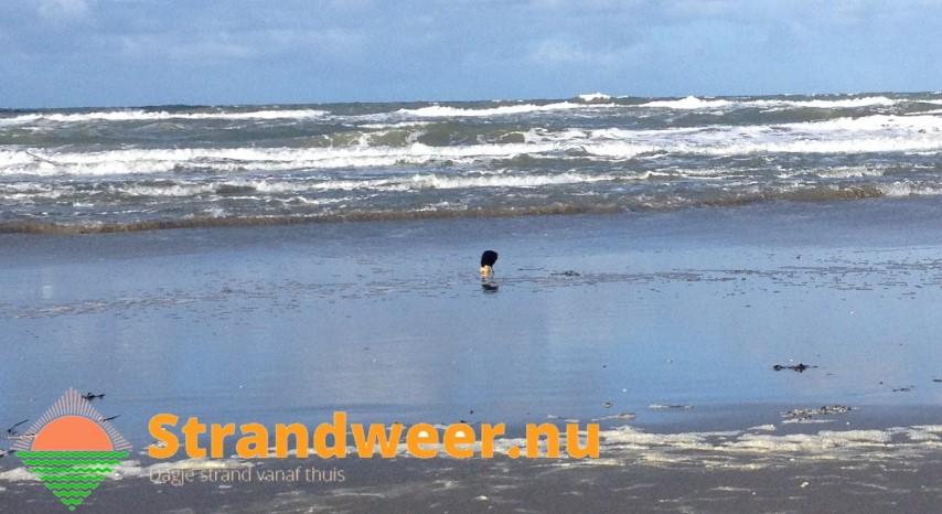 Wisselvallig strandweer voor vrijdag