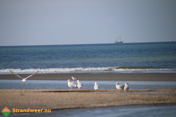 Strandweer voor dinsdag 17 oktober