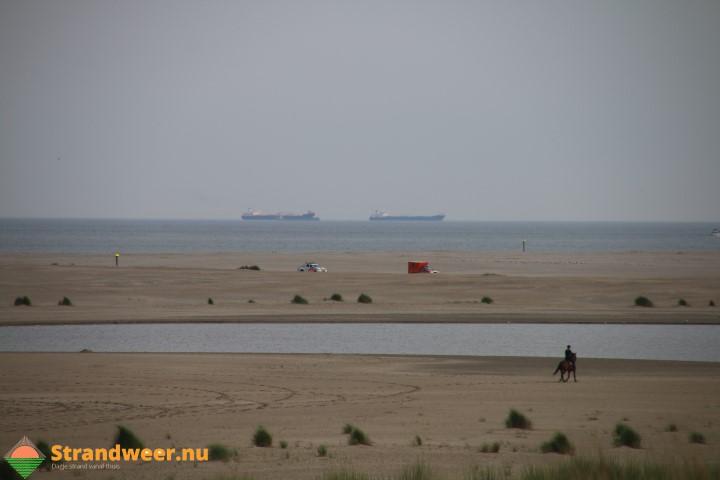 Veranderend zand: onderzoek naar invloed van mensen op strandecologie