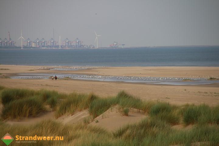Ook mini-tsunami op Westlandse stranden