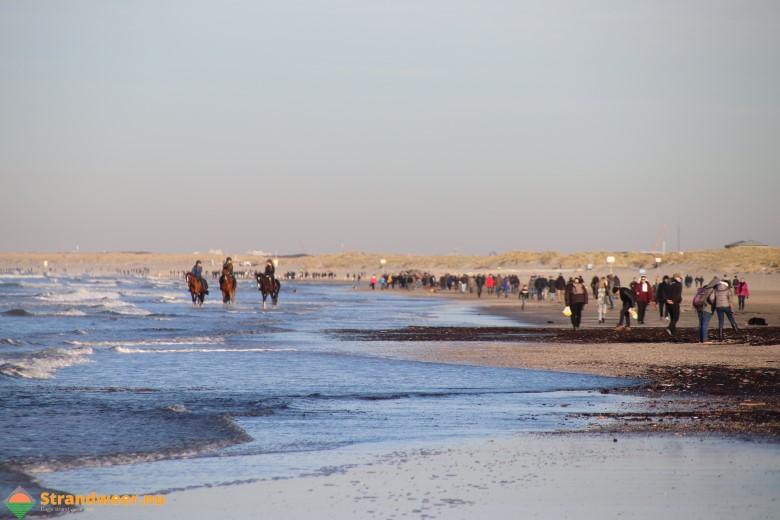 Het strandweer voor de laatste dag van 2019