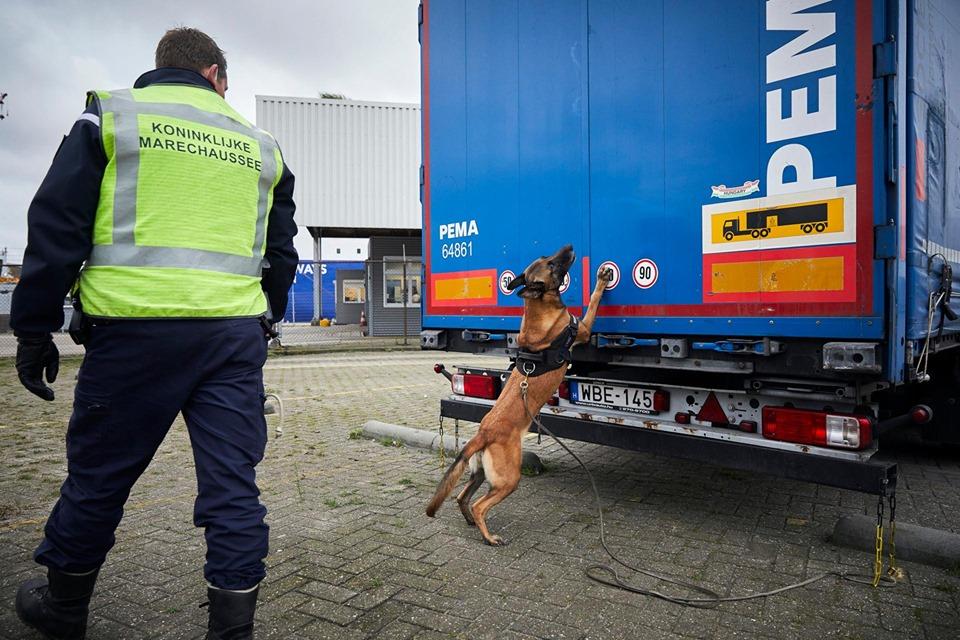 Geen ferry naar Engeland voor vreemdelingen bij  IJmuiden