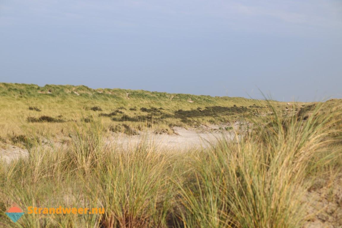Het strandweer voor woensdag 30 oktober