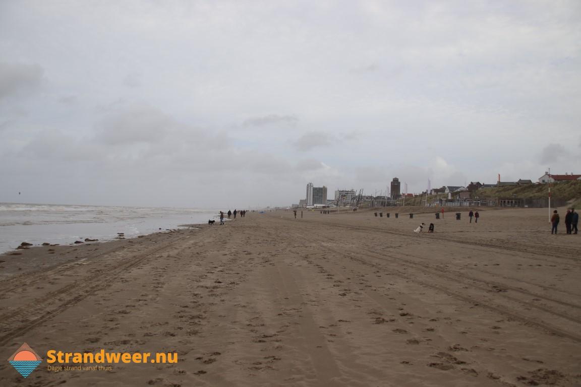 Honden op het Zandvoortse strand
