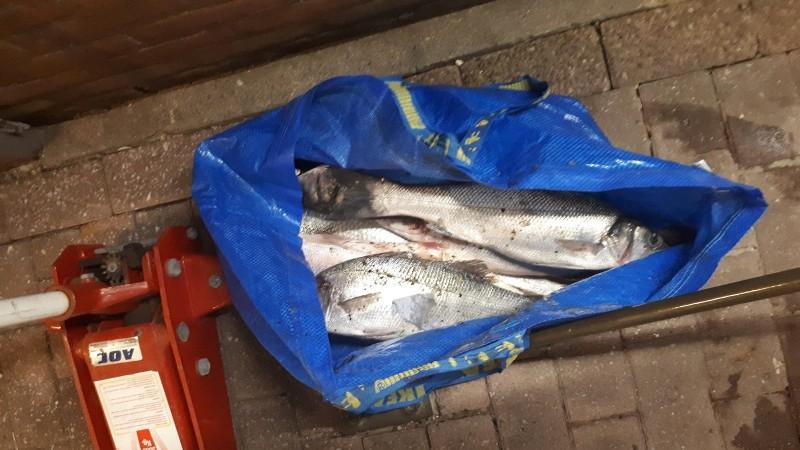 Zes visstropers aangehouden bij Oosterscheldekering
