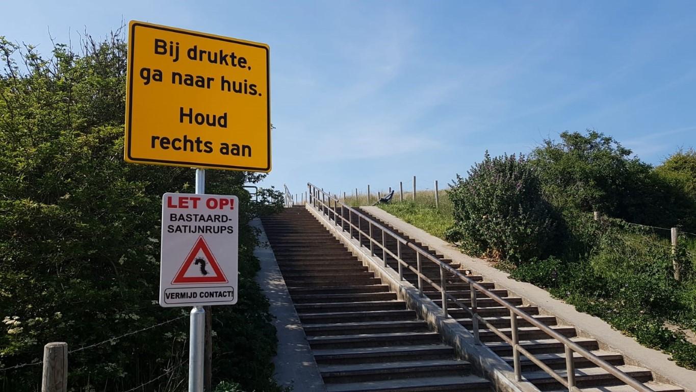 Strandgangers moeten alert zijn op bastaardsatijnrupsen!