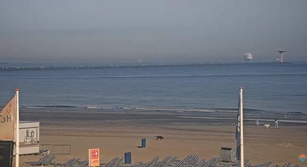 Het strandweer voor dinsdag 2 juni