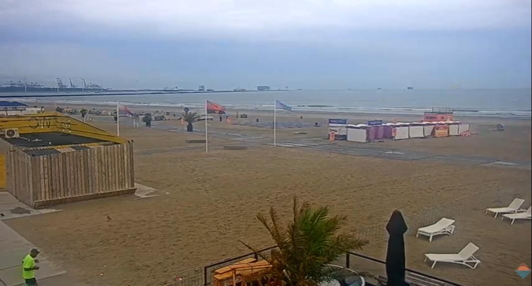 Zomerse stranddag voor donderdag 20 augustus