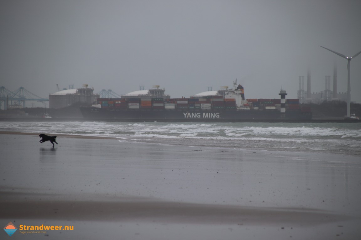 Het strandweer voor donderdag 12 november