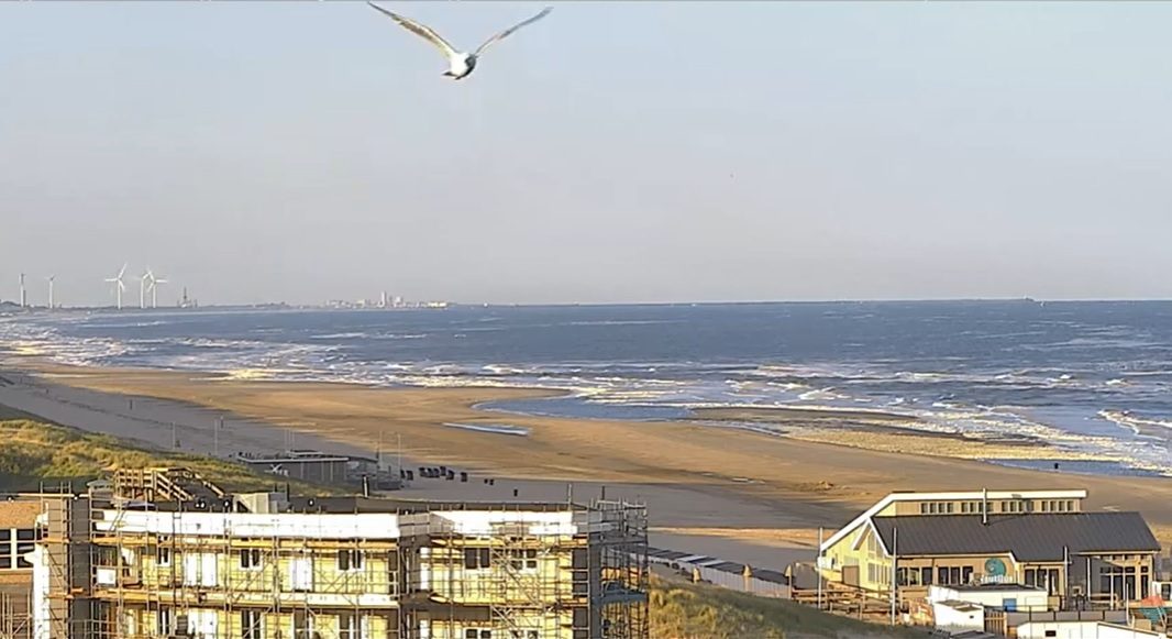 Het strandweer voor donderdag 14 mei