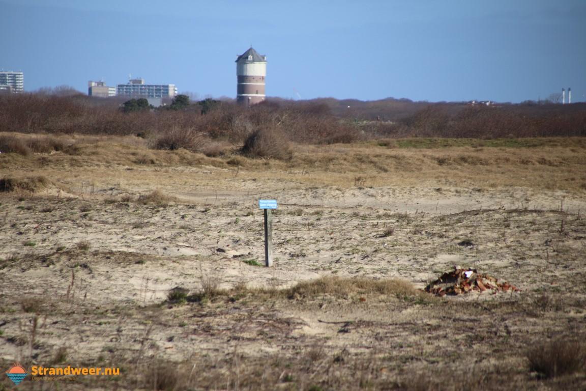Het strandweer voor zondag 29 maart