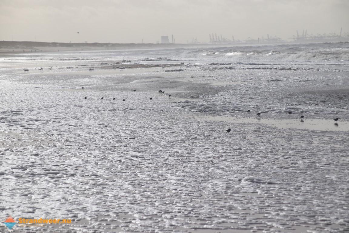 Zonnig en warm strandweer maandag