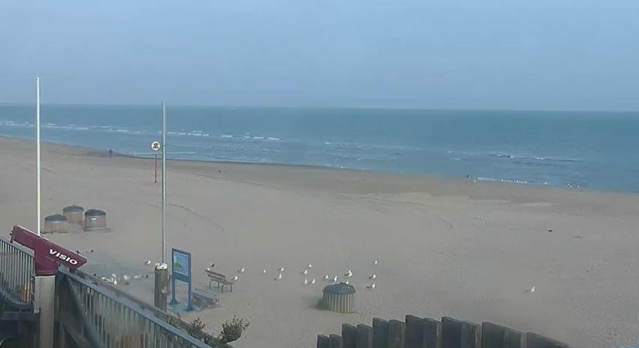 Het strandweer voor donderdag 11 juni
